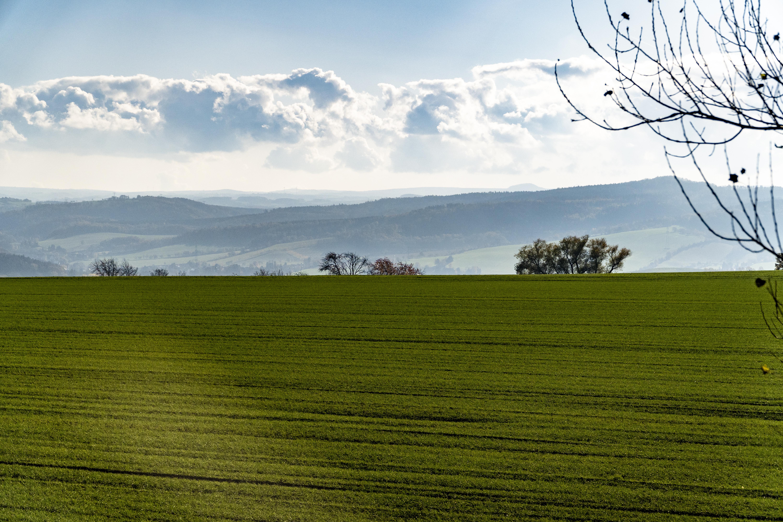 Landschaft bei Babisnau
